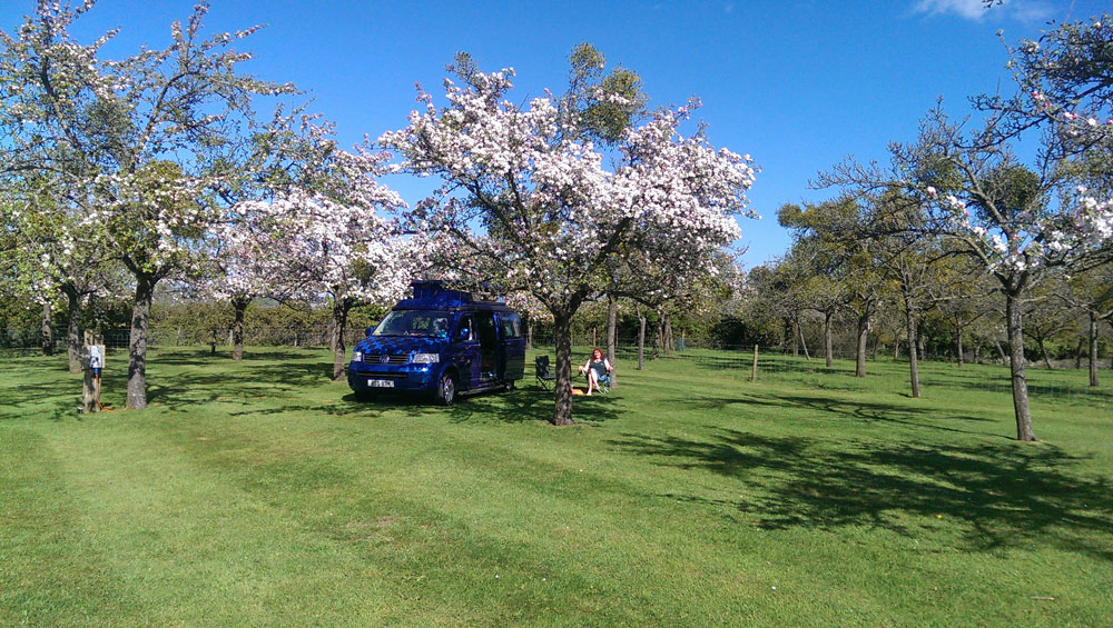 Campervan in the Orchard